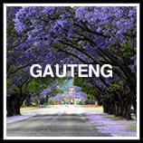 GautengA