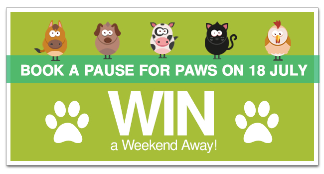 pause_for_paws